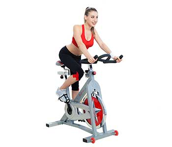 Pro-Indoor-Cycling-Bike-by-Sunny-Health-&-Fitness---SF-B901